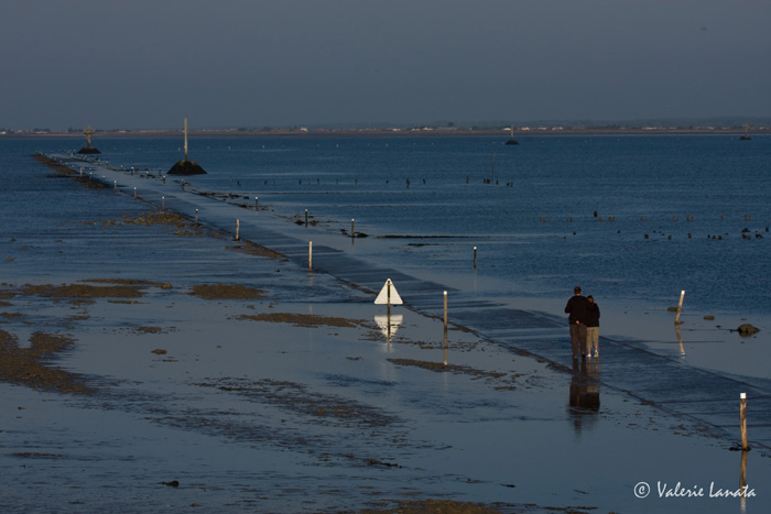 Passage du Gois - Noirmoutier