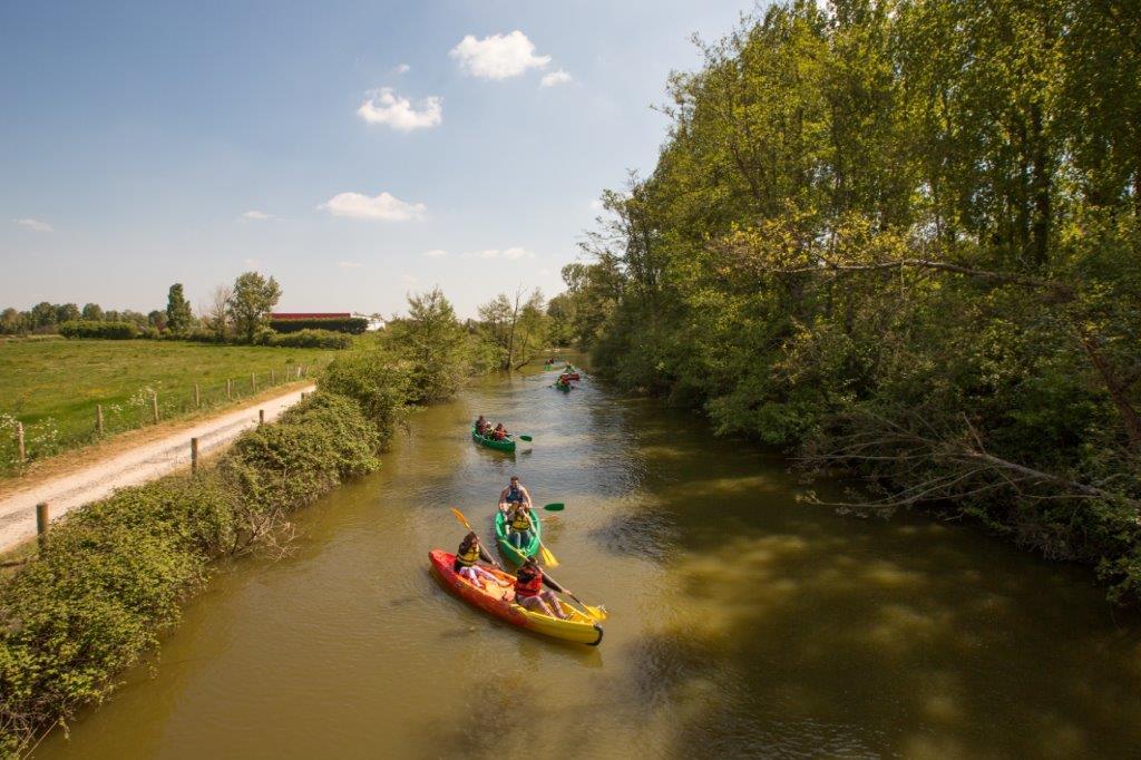 canoe du marais
