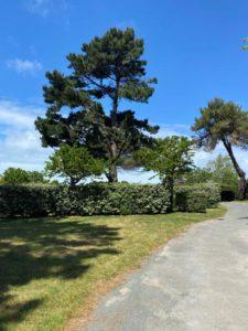 emplacements spacieux accueil vélo camping Vendée